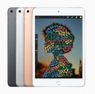 """iPad Mini 5 Pantalla 7.9"""" A12 64GB MUQX2LZ/A Wi-Fi iOS 12 Gris Plata"""